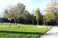 Garden nearby - Campo Mártires Pátria