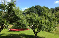 A double hammock in between two apple trees in the garden